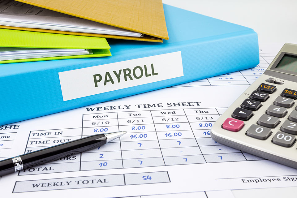 Small Business Payroll Stubs